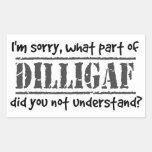¿Qué parte de DILLIGAF usted no entendía? Rectangular Pegatinas