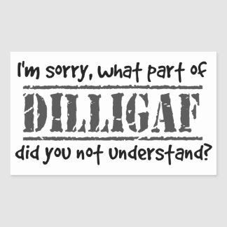 ¿Qué parte de DILLIGAF usted no entendía? Pegatina Rectangular