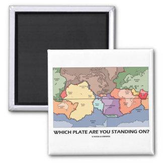 ¿Qué placa usted se está colocando encendido? (Tec Iman De Nevera