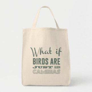 Qué si los pájaros son apenas cámaras extranjeras