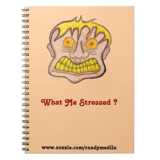 ¿Qué subrayó? … Cuaderno
