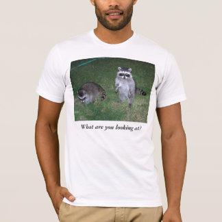 ¿Qué usted está mirando?  Camiseta del mapache