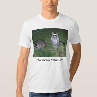 ¿Qué usted está mirando?  Camiseta del mapache Playera