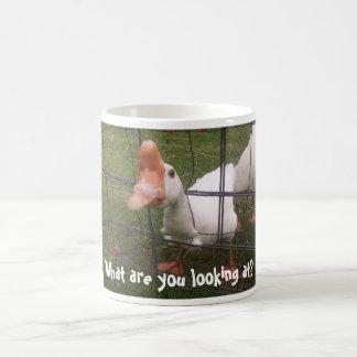 ¿Qué usted está mirando Taza de café fea del pato