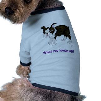 ¿Qué usted que mira? Camisa De Perro