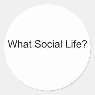 ¿Qué vida social? Pegatina Redonda