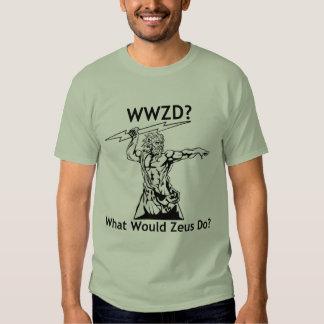 ¿Qué Zeus haría? - Camiseta ligera Poleras