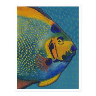 Queen Angelfish ArtCard Post Cards