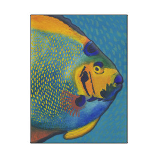 Queen Angelfish Stretched Canvas Prints