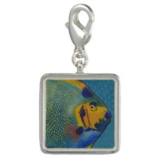 Queen Angelfish Charm