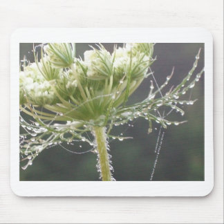 Queen Anne and Morning Dew Mousepad