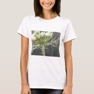Queen Anne and Morning Dew T-Shirt