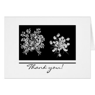 Queen Anne Lace Thank You Card