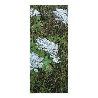Queen Anne's Lace White Wild Flower 4x9.25 Paper Invitation Card