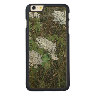 Queen Anne's Lace White Wild Flower Carved® Maple iPhone 6 Plus Slim Case