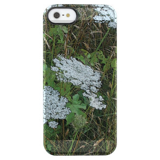 Queen Anne's Lace White Wild Flower Clear iPhone SE/5/5s Case