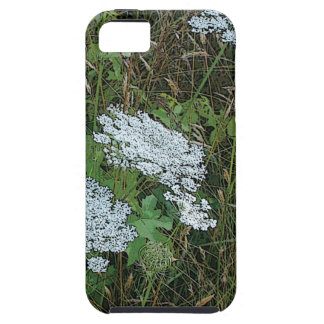 Queen Anne's Lace White Wild Flower iPhone SE/5/5s Case