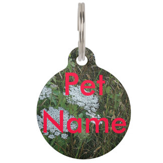 Queen Anne's Lace White Wild Flower Pet ID Tag