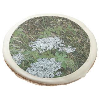 Queen Anne's Lace White Wild Flower Sugar Cookie