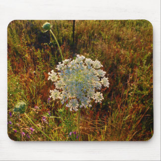 Queen Anne's Lace AKA Wild Carrot Mouse Pad