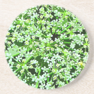 Queen Annes Lace Beverage Coaster