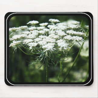 Queen Anne's Lace (Bishop's Lace) Mouse Pad