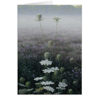 Queen Anne's Lace Cards