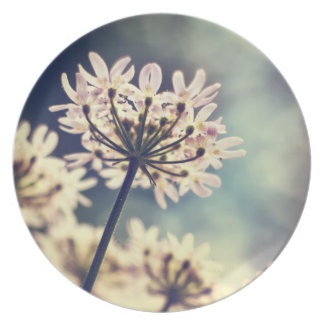 Queen Annes Lace flowers plate