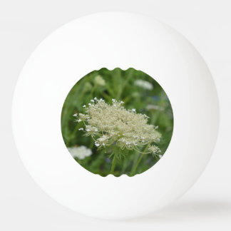 Queen Anne's Lace Ping-Pong Ball