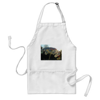 Queen Anne's Lace In Evening Adult Apron