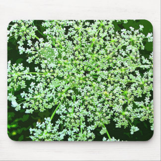 Queen Anne's Lace Mouse Pad