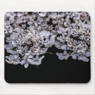 queen anne's lace mouse pads