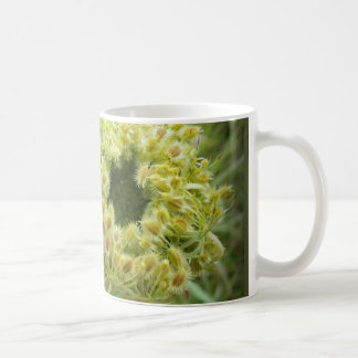 Queen Anne's Lace Photo Coffee Mug