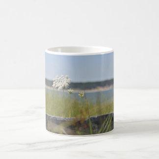 Queen Anne's lace photo Coffee Mug