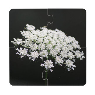 Queen Anne's Lace Puzzle Coaster