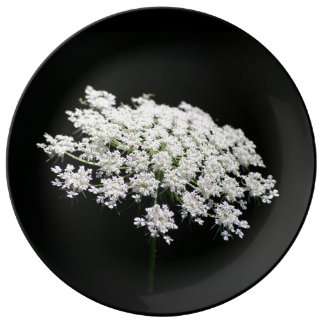 Queen Anne's Lace Plate