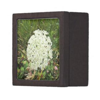 Queen Anne's Lace - Prairie Mile Gift Box