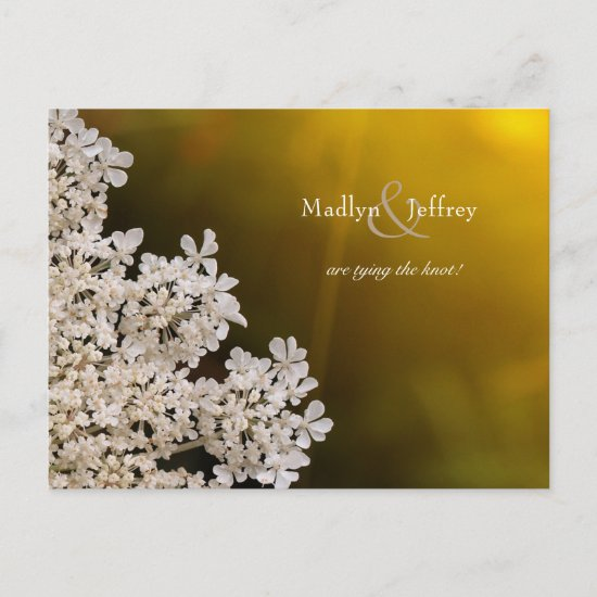 Queen Anne's Lace sunlight wedding save the date Announcement Postcard