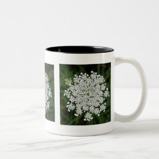Queen Anne's Lace Two-Tone Coffee Mug