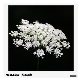 Queen Anne's Lace Wall Decal