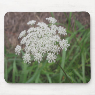 Queen Anne's Lace Wildflower Mousepad