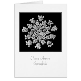 'Queen Anne's Snowflake' Blank Note Card