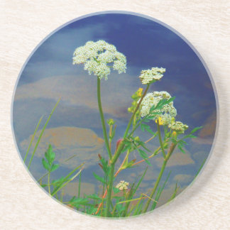 Queen Ann's lace blue lake Beverage Coaster