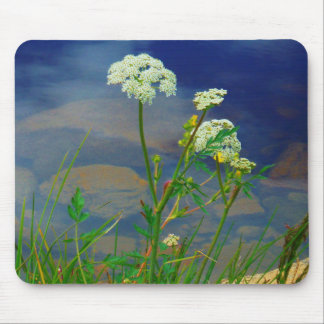 Queen Ann's lace blue lake Mouse Pads