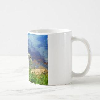 Queen Ann's lace flowers, blue mountain lake Coffee Mug