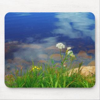 Queen Ann's lace flowers, blue mountain lake Mousepads