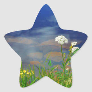 Queen Ann's lace flowers, blue mountain lake Star Sticker
