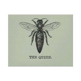 Queen Bee Black and White Illustration Canvas Print
