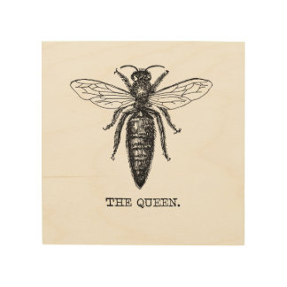Queen Bee Drawing Vintage Black Wood Wall Decor