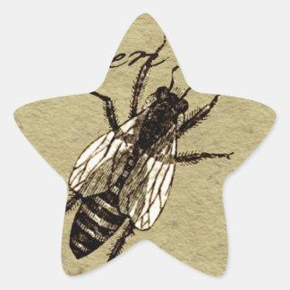 Queen Bee Star Sticker